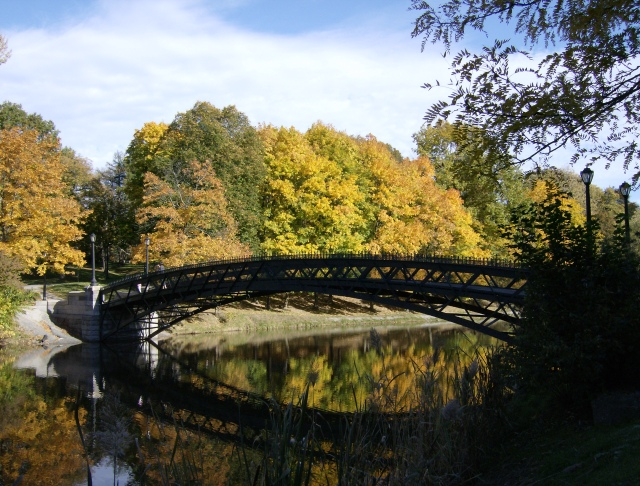 Albany in the Autumn -- oh how I miss the Northeast this time of year!